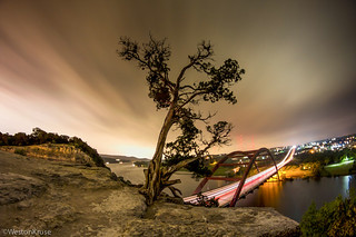 360 Bridge x Tree x Weston Kruse