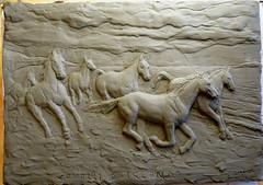cavalli di irlanda sulla spiaggia al galoppo .argilla