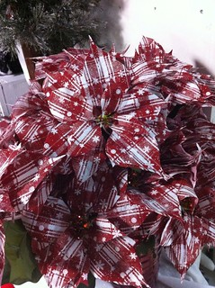 plaid poinsettia