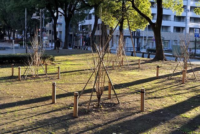yokohama2012_12_kpax