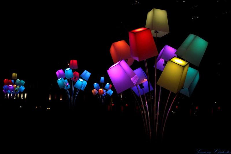 fête+des+lumières+2012+lyon+laurence+chabalier