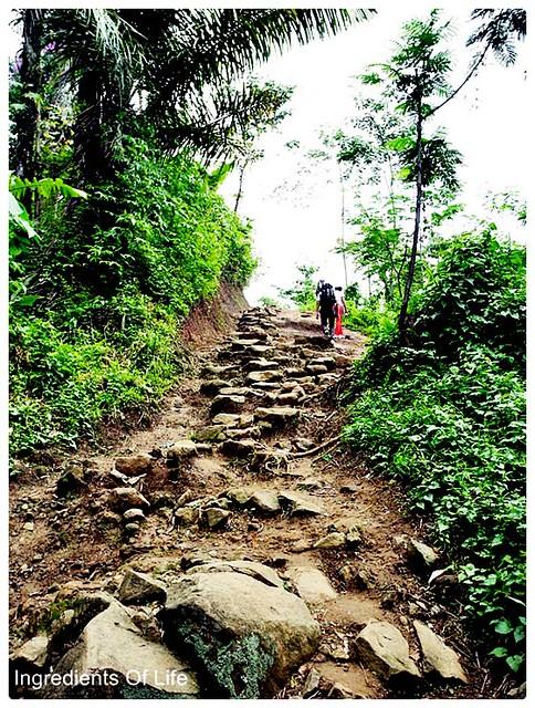 Jalan menuju desa badui