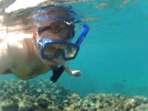 Snorkeling Gear Maui Rental of Snorkeling Gear