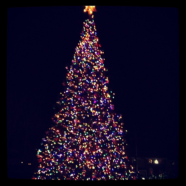 Caroling with my book club tonight and this pretty tree was in front of the firehouse!