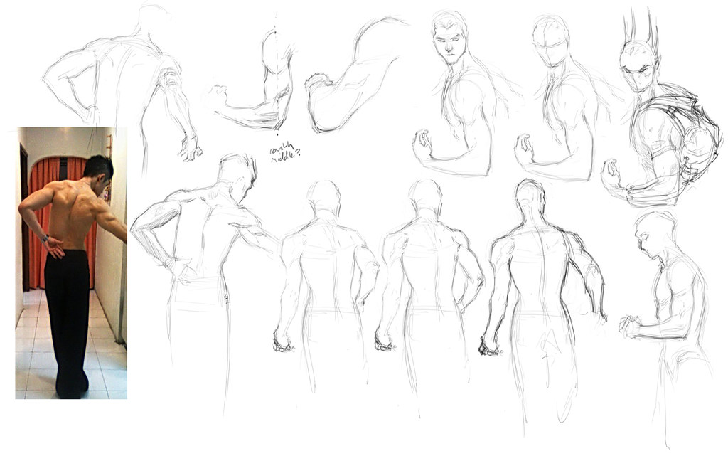 "Spartan Camp #247 - 50 gestures + Optional ""Muscle Naming Exercise"""