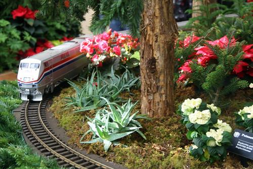 Gray-Train