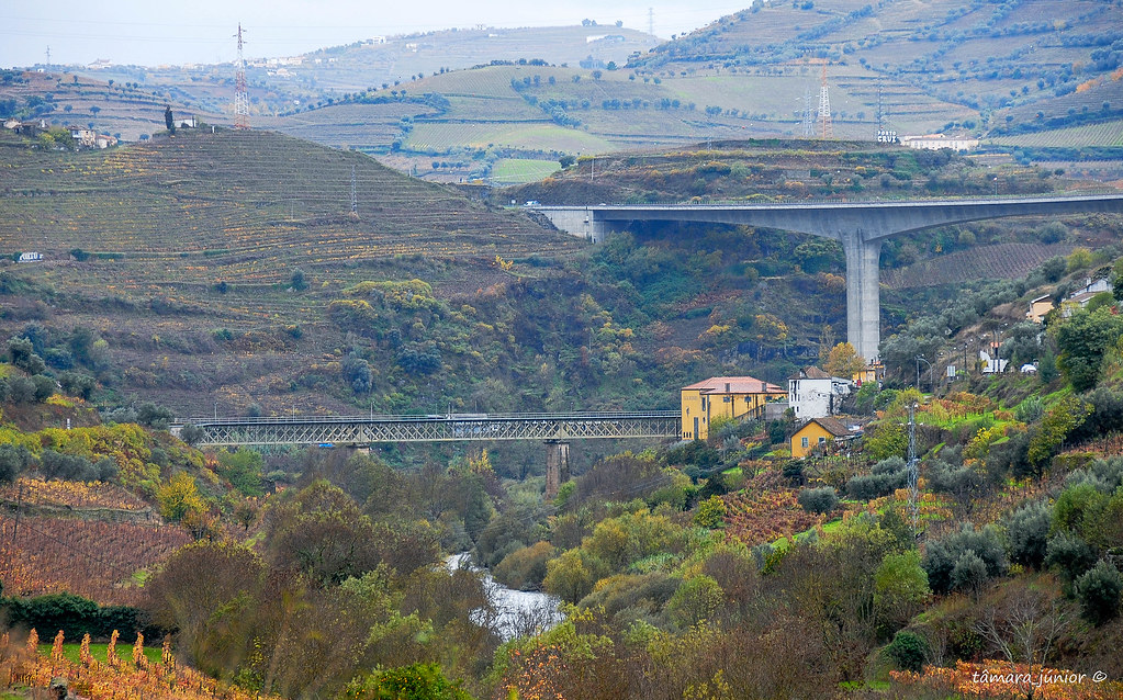 16.- 2010 - Linha_Corgo-Povoação-Régua 173