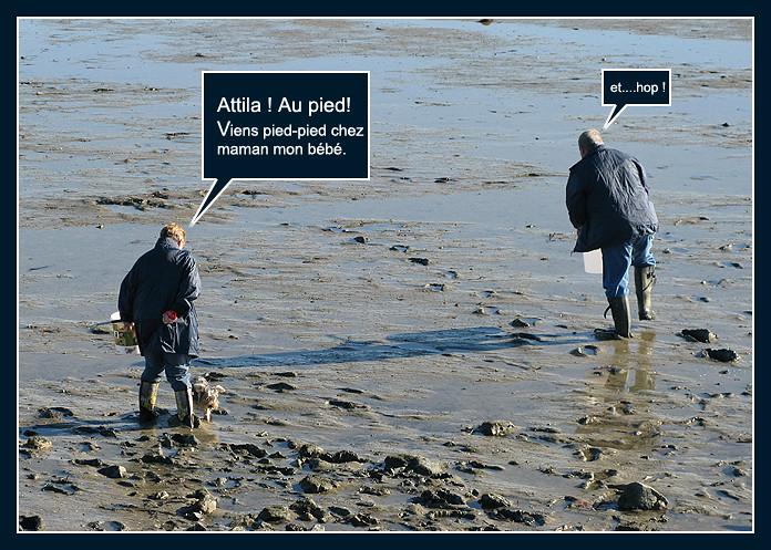 La pêche aux palourdes (bédé photo-roman) - Page 2 8158674479_62c7ba045d_b