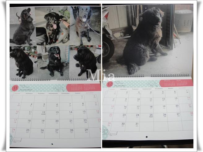 2013年掛曆-12