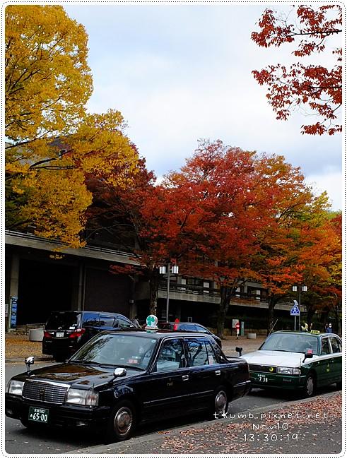 2012-11-10 13.30.19.jpg