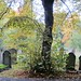 Autumn in Brockley Cemetery 10
