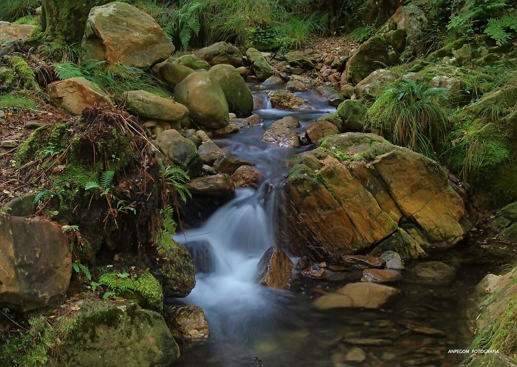 Monte Aloia Nature Park Location Newhairstylesformen2014 Com