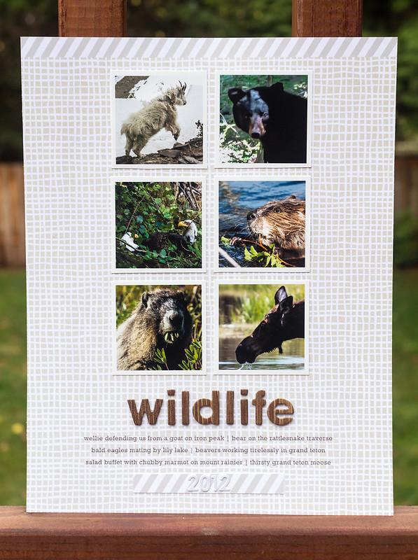 Wildlife 2012