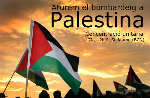 concentracio en slidaritat amb palestina 17 novembre 2012