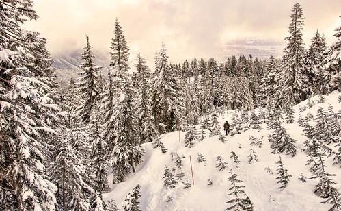 Snowshoeing Cypress