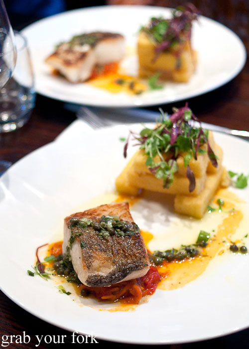 hake and truffle polenta chips at fiddlesticks christchurch