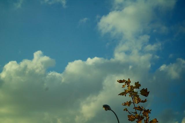 327/366: Sky in autumm