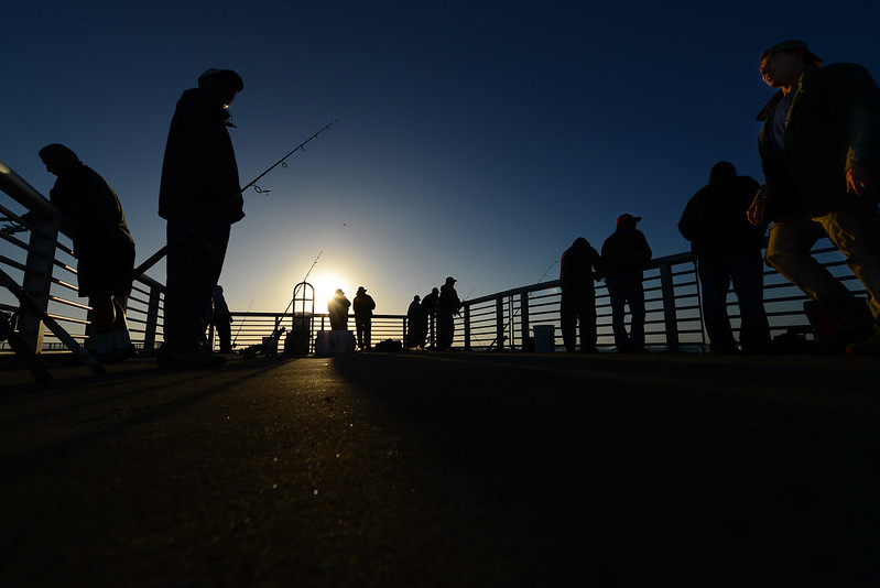 Fishing at early light