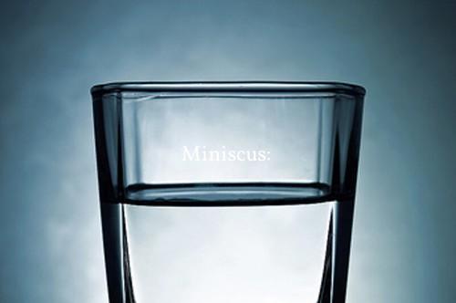 Miniscus