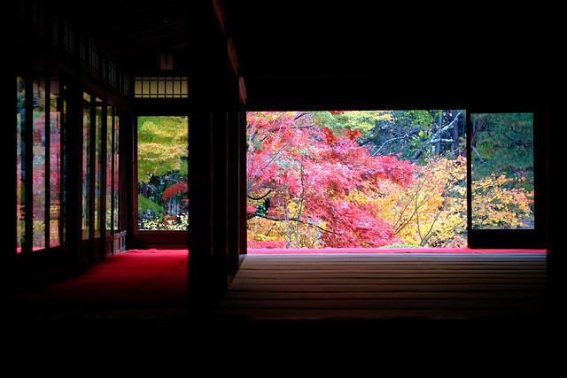 窓外の紅葉