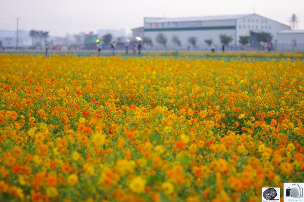 2012-11-25 橋頭華田囍事