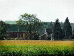 Old-Farm