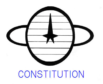 Constitution Patch