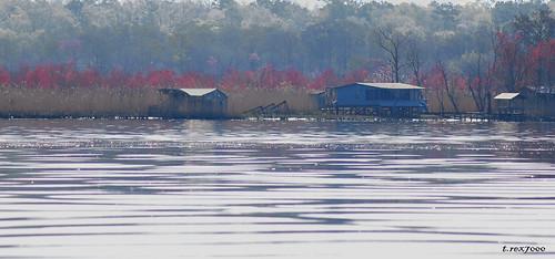 old camp house abandoned rural river landscape fishing cabin alabama southern bayou swamp wetland tensawriver mobiletensawdelta trex7000 arpub