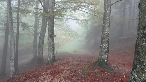 Passo della Calla by meteomike