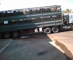 commercial vehicle, vehicle, truck, transport, trailer truck, trailer, land vehicle,