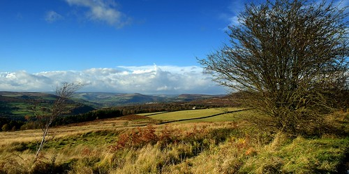View from Longshaw