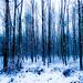 _||_blue_||||_snow_|||
