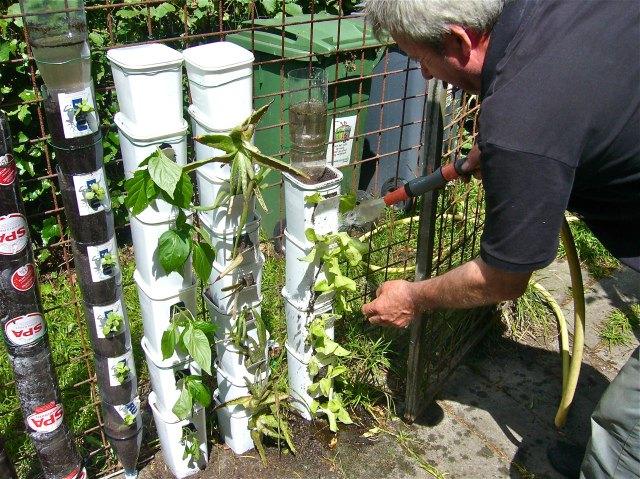 C mo hacer un jard n vertical con material reciclado for Materiales para jardines verticales