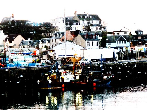 Mallaig Harbour, Scotland