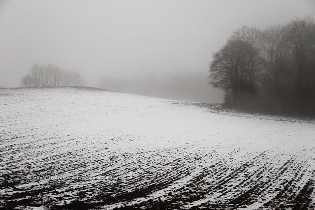 Loejtland twilight mist