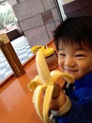 恵比寿ガーデンプレイスのスタバでバナナ(80円)を食べるとらちゃん 2012/12/19