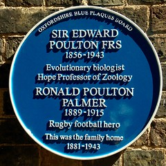 Photo of Blue plaque № 41437