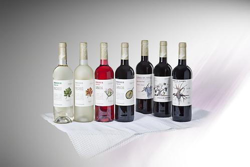 Gama Viñas de Miedes Bodegas San Alejandro