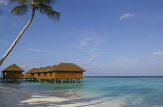 Veligandu - Atollo di Rashdoo