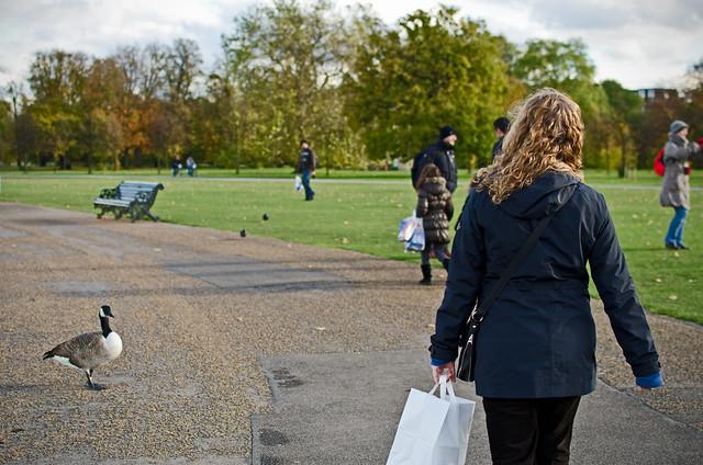 kensington park london