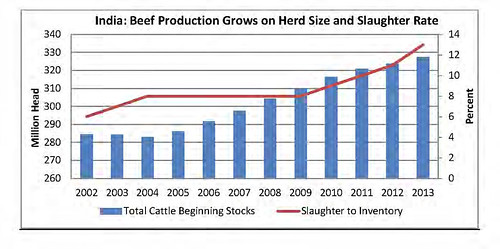 India beef production growth on herd size and slaughter rates