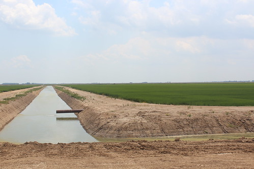 A tailwater recovery stems traps and circulates water around fields, which conserves water while preventing runoff of sediments and nutrients into nearby natural waterways.