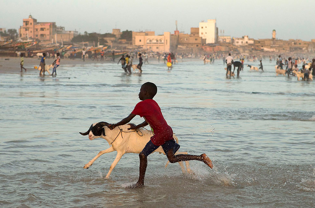 APphoto_Senegal Eid al Adha