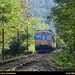 CP 592 no meio do verde da paisagem - Linha do Minho by Luís Meireles