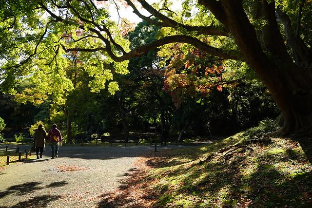 Hama-rikyu Gardens 2