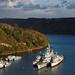 Flotilla by Stygian Echo
