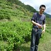 M. He (Huiming Yuzan) dans ses jardins, Zhejiang