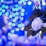 Abilities Centre 7th Annual Dream Gala