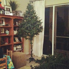 Huston - we have liftoff! The tree is standing straight - day 3 of wrestling this thing & I'm about to win!!! #findingjoy #Christmas #hsmommas