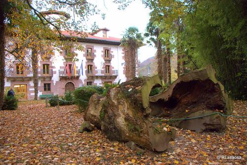 Parque del Señorío de Bértiz, Navarra by Rufino Lasaosa